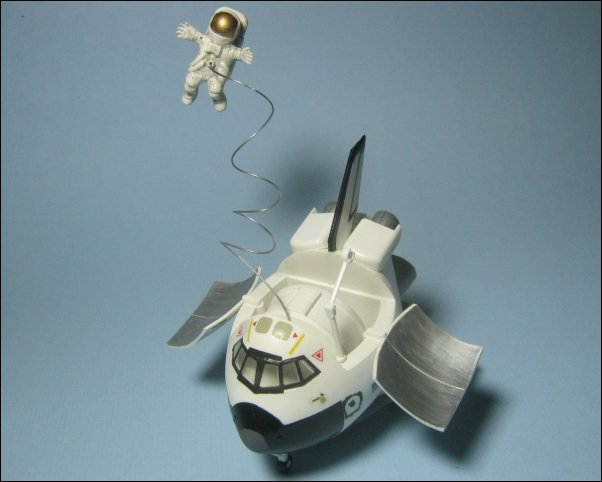 hasegawa model:
